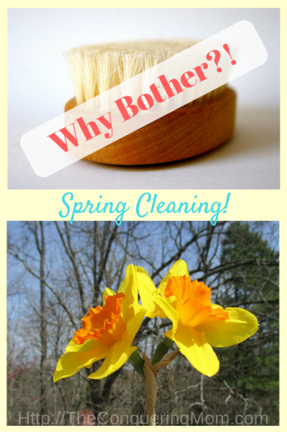 How on earth did we inherit Spring Cleaning Guilt? Why would anyone bother when the weather outside is delightful and cleaning is so frightful?