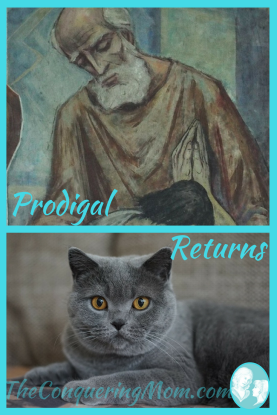 When a Prodigal Returns, Is She Guilty? Or do we rejoice?